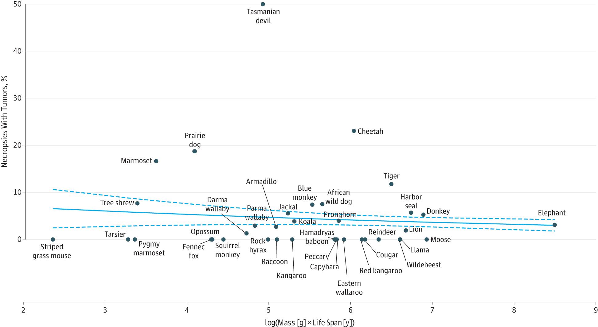 動物毎の癌化死亡率