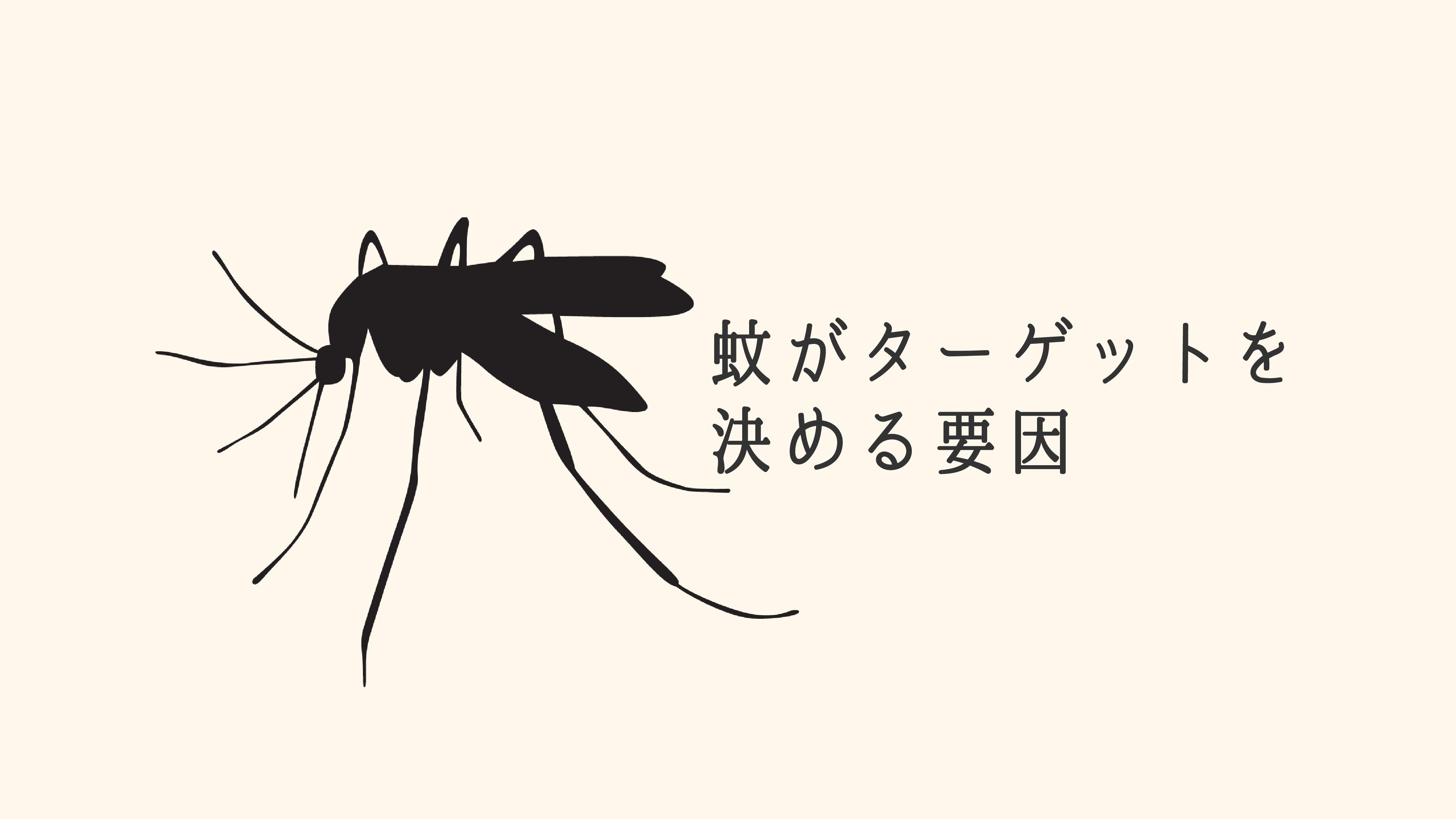 蚊ドラッグエンジン